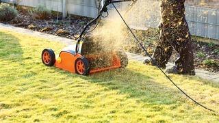 Выбираем технику для ухода за газоном и садом: аэратор и скарификатор