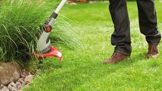 Как выбрать триммер для дачи и сада