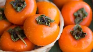 Хурма: выращивание из косточки дома