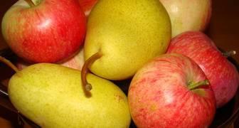 Яблоки и груши: заготовка плодов на зиму