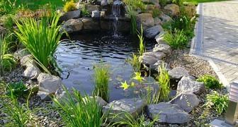 Защита водоема от солнца и трещин в августе