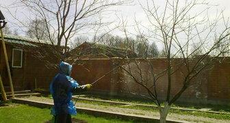 Уничтожаем вредителей сада и огорода