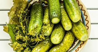 Вкусные хрустящие огурчики на зиму с мятой