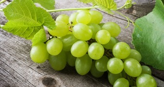 Полезные свойства винограда и содержание витаминов