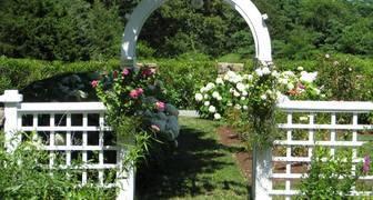 Садовые арки своими руками: фото и идеи дизайна фото
