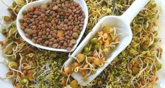 Проращивание семян - натуральный способ получения витаминов в январе