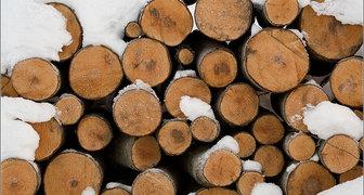 Какие дрова выбрать для отопления частного дома в февральские морозы