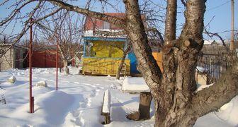 Уход за деревьями зимой, защита от ожогов и морозобоин