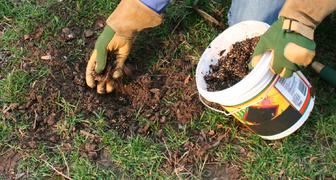 Проводим плановый ремонт газонного покрытия
