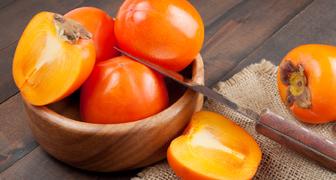 Как вырастить хурму Шарон из косточки и собрать урожай