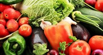 Как самому рассчитать даты посева семян овощей на рассаду