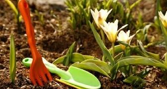 Календарь ежедневных работ в саду и огороде на март в виде таблицы фото