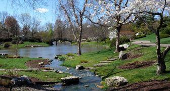 Обязательные работы по уходу за садом весной фото