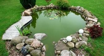 Лучшие методы очистки пруда и водоема на даче от запахов и ряски. фото
