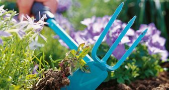 Уничтожаем сорные растения в огороде быстро и качественно
