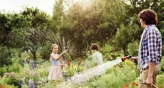 Сад в стиле прованс: атмосфера участка в стиле французской провинции