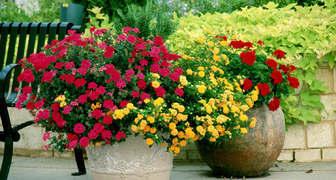 Разнообразие ваз и кашпо для веранды и террасы