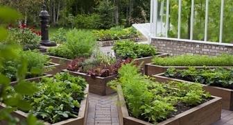 Современный огород: фото идей оформления и их реализация