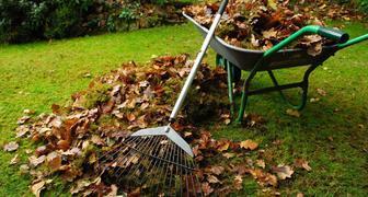 Календарь садовода на ноябрь. Таблица
