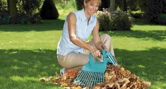 Сбор опавших листьев и закладка листового перегноя фото