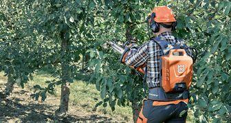 Советы по уходу за деревьями от Husqvarna