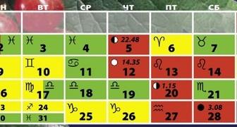 Лунный календарь на январь 2017 для огородников