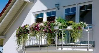 Домашнее садоводство от GARDENA - 6 растений для красоты и еды