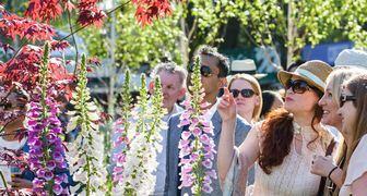 Цветочное шоу Chatsworth Flower Show
