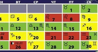 Лунный календарь на декабрь 2020 для огородников