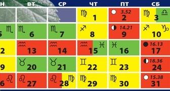 Лунный календарь на март для огородников