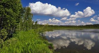 Всемирный день воды - экономим природные ресурсы и поливаем огород правильно