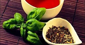 Базилик - польза и вред для организма, употребление при заболеваниях