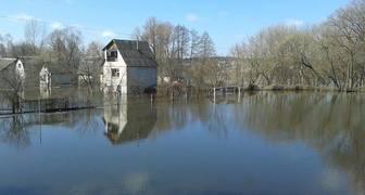 Потоп на даче - что делать, если вода на участке, в погребе, и в доме