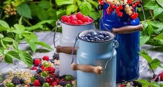 День Ярилы и Макушка лета: собираем урожай и ухаживаем за корнеплодами