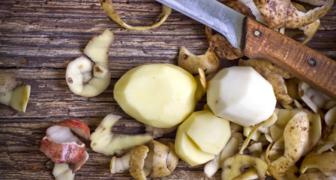 Подкормите смородину картофельными очистками - ягоды будут крупнее