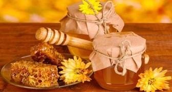 Медовый Спас - собираем мед, готовим медовуху и купаемся в водоемах