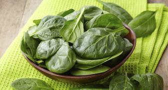 Вкусные и полезные блюда из шпината, способы заготовки на зиму