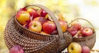 Яблочный Спас и Преображение Господне: собираем и заготавливаем яблоки