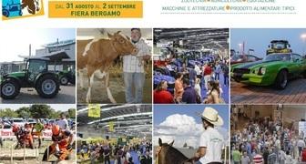 Сельскохозяйственная выставка Fiera di Sant'Allessandro в Италии