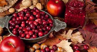 Куприянов день - собираем клюкву и готовим осеннюю шарлотку из яблок