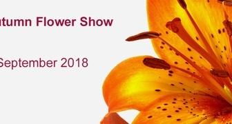 Выставка цветов Harrogate Autumn Flower Show 2018 в Великобритании