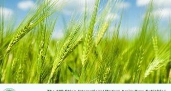 Выставка современного сельского хозяйства CIMAE 2019 в Китае