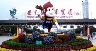 Выставка цветов Kunming International Flower Expo of China 2019 фото