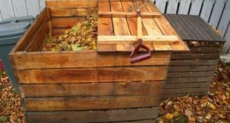 Органические подкормки помогут избавиться от химии в огороде