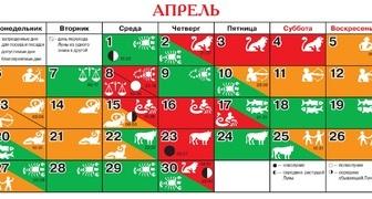 Посевной календарь на апрель для огородников