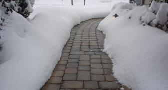 Скользкие дорожки в саду? Это средство поможет безопасно снять наледь