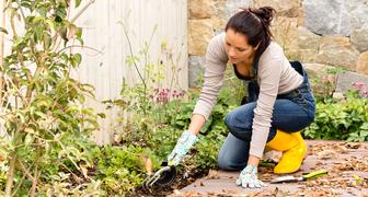 Ларион Пропольник - чистим колодец и убираем участок от сорняков и поросли