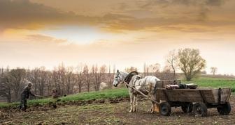 Федор Колодезник - бурим скважины и удобряем землю навозом