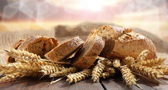 Федот Урожайник - завершаем посевы ржи и занимаемся благоустройством